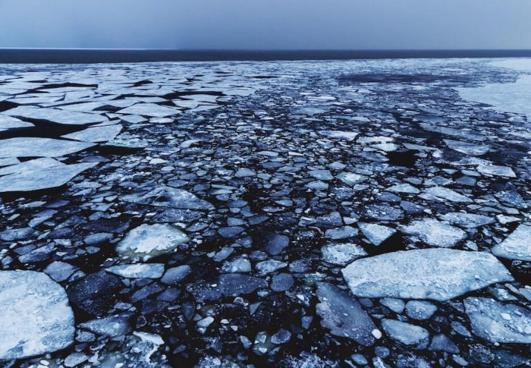 Liepto priežiūra: kaip paruošti lieptą žiemai ir ledonešiui